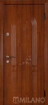 Милано 732 - Входные двери, Входные двери в дом