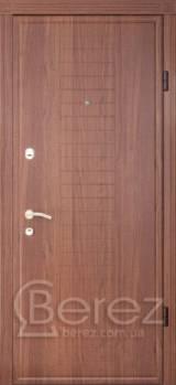 В102 Берез - Входные двери, Входные двери в дом