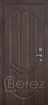 В18 Берез Strada - Входные двери, Входные двери в дом