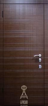 Берислав Граффити М4 - Входные двери, Входные двери в квартиру
